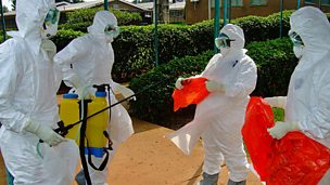 Image for Airborne transmission of Ebola