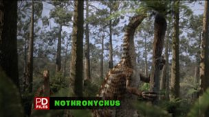Nothronychus - profile