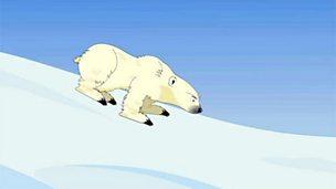 Why did the brown bear evolve into the polar bear?