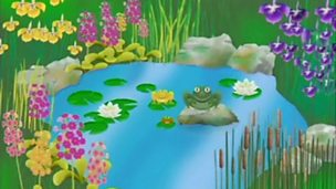 Counting - the frogs and the dried up pond