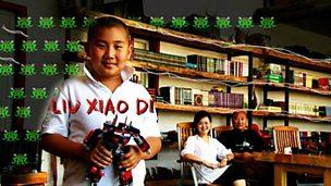 Liu Xiao Di and the single child policy