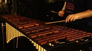 Xylophone playing performance from a young musician