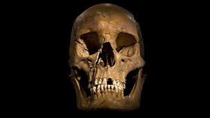 Image for Richard III's life reduced to 90 seconds