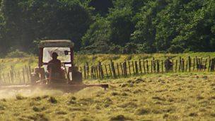 Farm diversification and tourism in Snowdonia