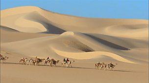 Tubu traders in the Sahara Desert