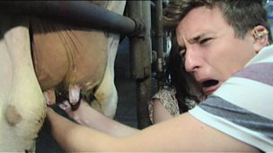 Image for Sofa Surfing: Day 4 - Greg James milks a cow!