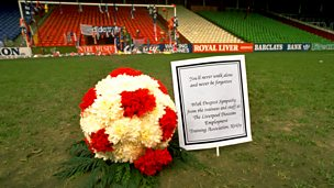Image for Hillsborough Stories