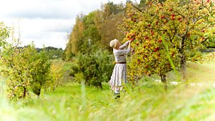 Image for Jonathan Davidson - Miss Balcombe's Orchard