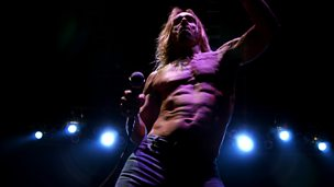Image for The Iggy Pop Story