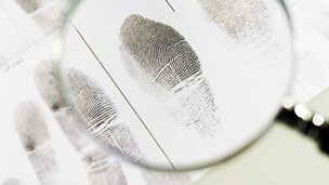 Image for Fingerprints on Trial