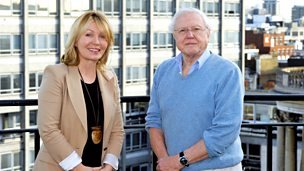 Image for Sir David Attenborough