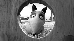Image for Tim Burton's Frankenweenie, David Walliams, US TV series Girls