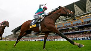 Image for Frankel - Starstudded