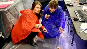 Image for Ellie Taylor Plays Snog Marry Eggvoid