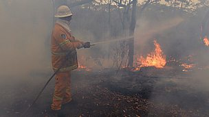 Image for Australian Bush Fires