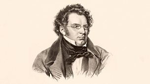 Image for Schubert and Vienna