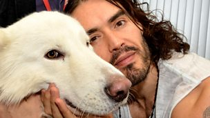 Image for Russell Brand: 'I'm calling for huge civil disobedience'