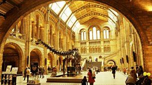 Natural History Heroes