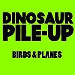 Birds & Planes