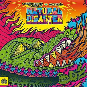 Natural Disaster (feat. Example) (Andy C Remix)