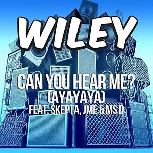 Can You Hear Me? (Ayayaya) (feat. Skepta, JME & Ms D)