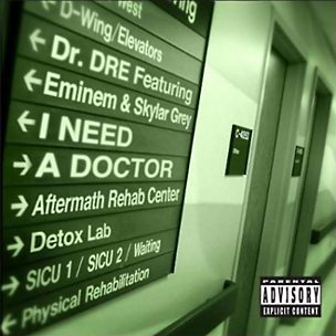 I Need A Doctor (feat. Eminem & Skylar Grey)
