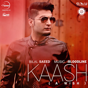 Kaash (A Wish) (feat. Bloodline)