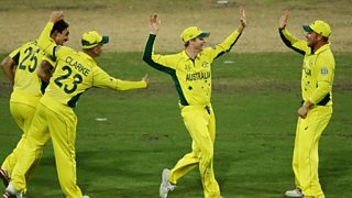 Australia beat India by 95 runs to reach the final of the cricket World Cup.
