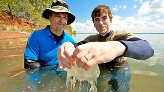 Australia with Simon Reeve, Episode 2