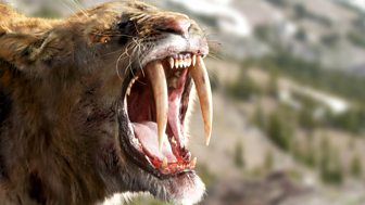 Ice Age Giants, 1. Land of the Sabre-tooth