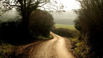 Escape To The Country - Series 17 (45 Minute Versions): 24. Dorset