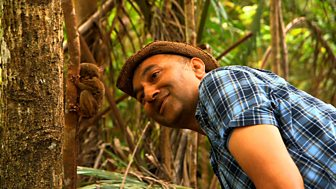 On The Travel Show this week Rajan Datar heads to the Philippines.