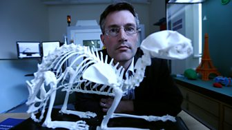Horizon - 2014-2015: 11. 70 Million Animal Mummies: Egypt's Dark Secret