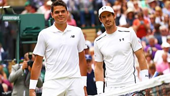 Wimbledon - 2016: Men's Final