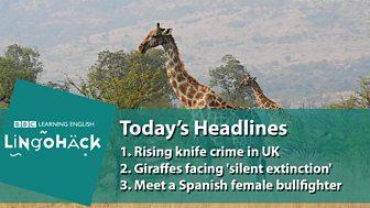 LingoHack - English through news stories