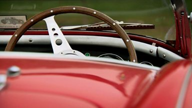 Image for The lure of the Austin-Healey 100