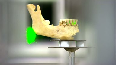 Image for Secrets in Neanderthal teeth