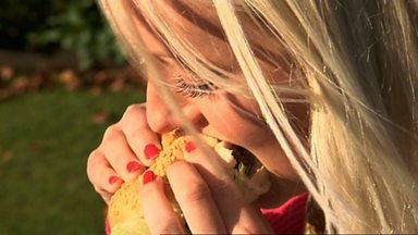 Image for Eating insects: Make mine a mealworm burger