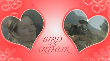 Image for Bird and Arthur
