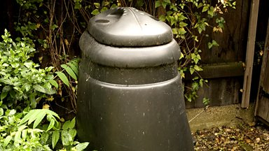 Image for MacAulay and Co: Gardening Tips - Compost