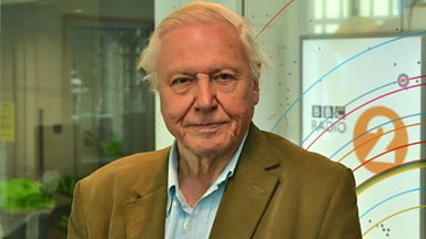 Image for Sir David Attenborough chats to Steve