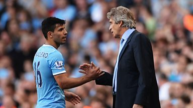 Image for Pellegrini: