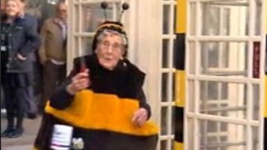 Image for Hull's Bee Lady opens her special phone box