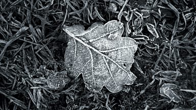 Image for Frost at Midnight by Samuel Taylor Coleridge