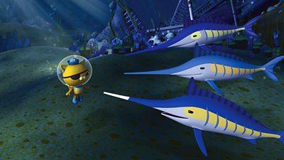 Swashbuckling Swordfish