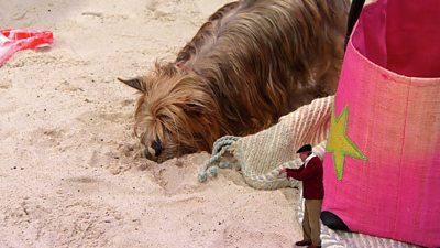 Wulfy the Wonderdog