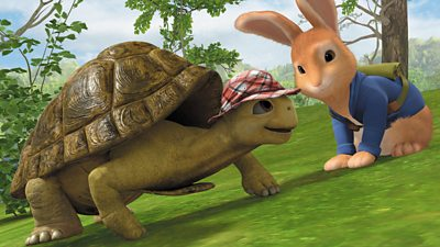 The Tale of the Tricky Tortoise