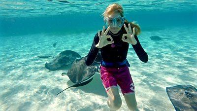 Cayman Castaway