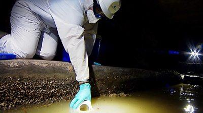 Man testing sewer water