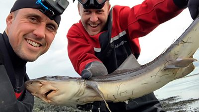 Ben Norrington and Andrew Ward with a smooth-hound shark